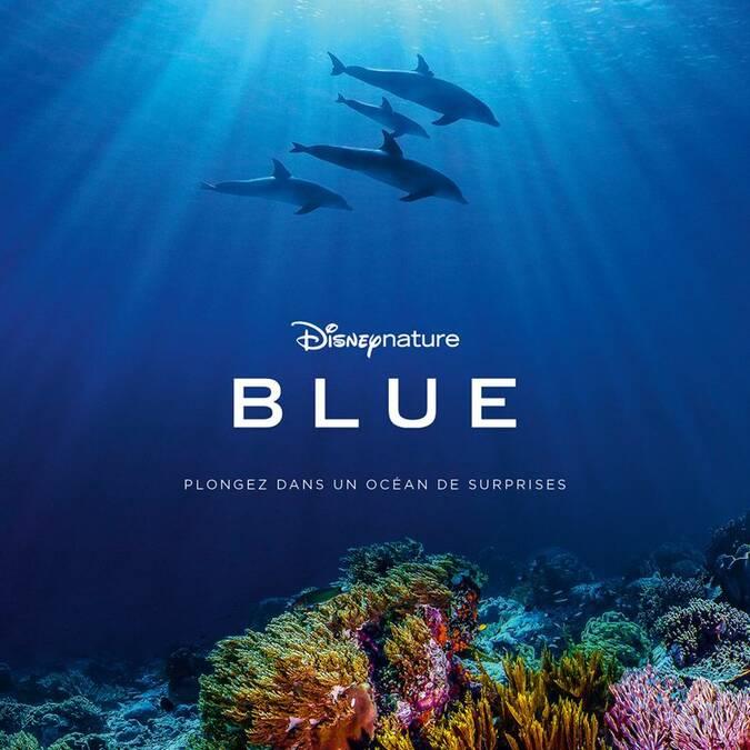 Le dernier Disney Nature Blue au cinéma Le Gascogne à Condom